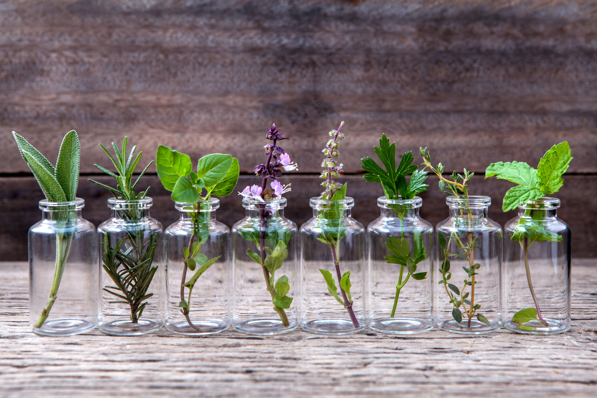 6 Essential Oils for the Healthiest Possible Hair