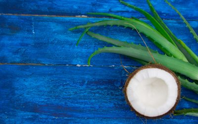 Support Healthy Hair With Aloe Vera and Coconut Oil